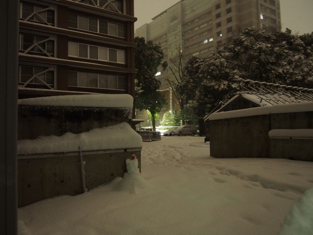 The University of Tokyo in snow